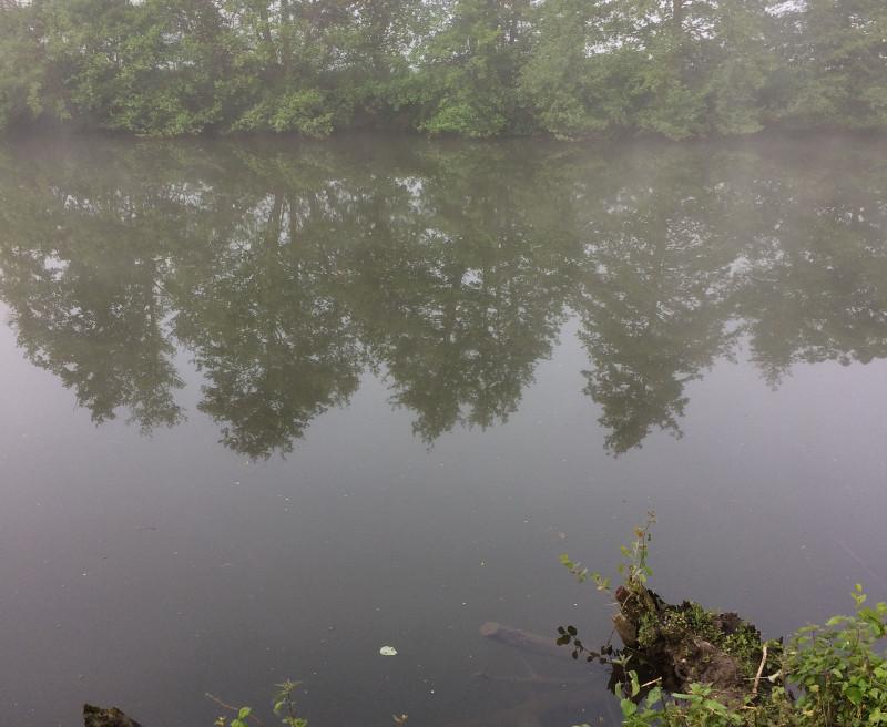 photo de l'orne, brouillard