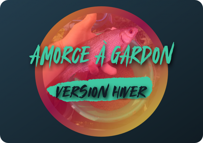 Amorce à gardon: version hiver