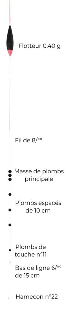 schéma montage ligne gardon hiver étang