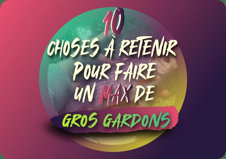 Read more about the article 10 choses à retenir pour faire un max de gros gardons