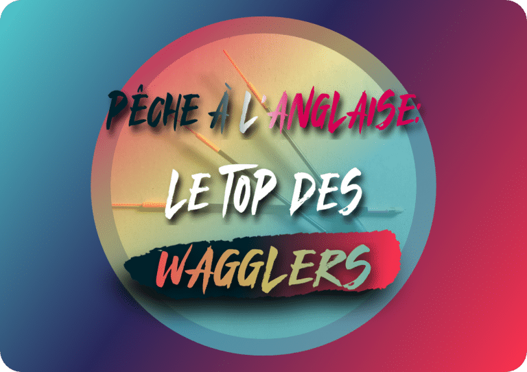 Read more about the article Pêche à l'anglaise: le top des wagglers