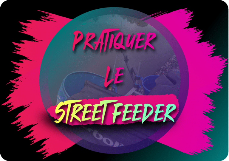 Read more about the article Pratiquer le Street Feeder