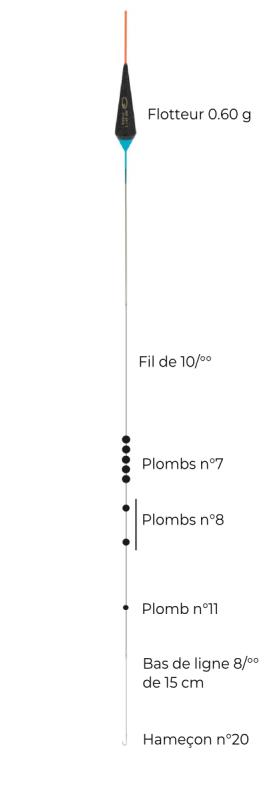 schéma montage etang gardon garbolino